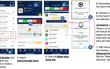 Make the Team sheet Live